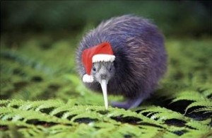 New-Zealand-merry-Christmas-from-Slatecrete