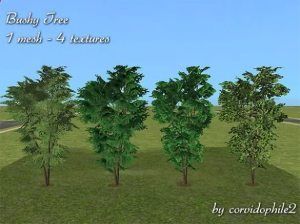 SironaSimscorvi_bushy_tree_mesh_and_textures